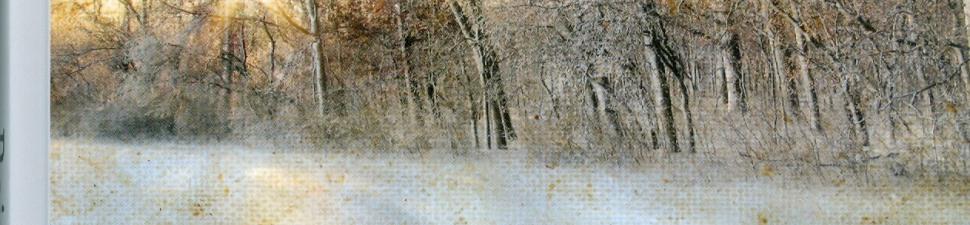 Het winterschilderij gl - kopie